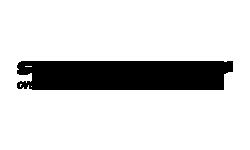 Slovak Lines logo